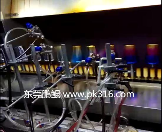 双色玻璃杯喷漆生产线 (2)